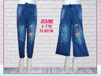 Celana Jeans Aank